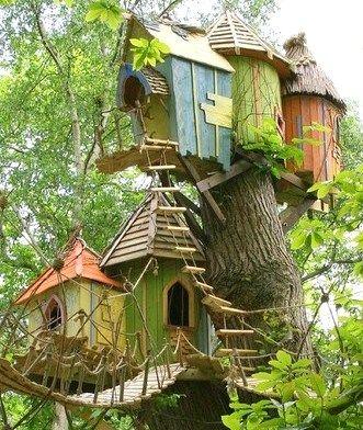 multi cabane dans les arbres